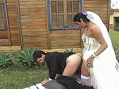Carol playful shemale bride