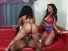 Two ebony mommas having fun with one black dick