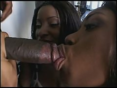2 BLACK CHICKS DESTROYED BY BBC